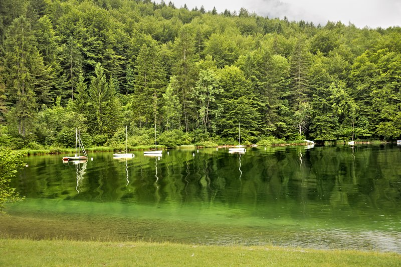 large_Lake_Bohinj_4.jpg