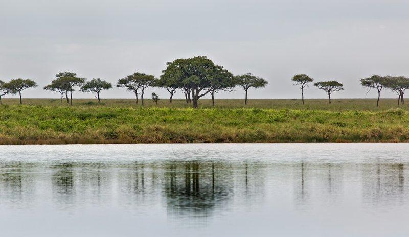 large_Lake_Magadi_11-1.jpg