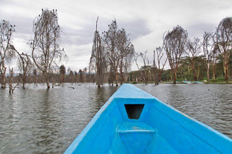 large_Lake_Naivasha_4.jpg