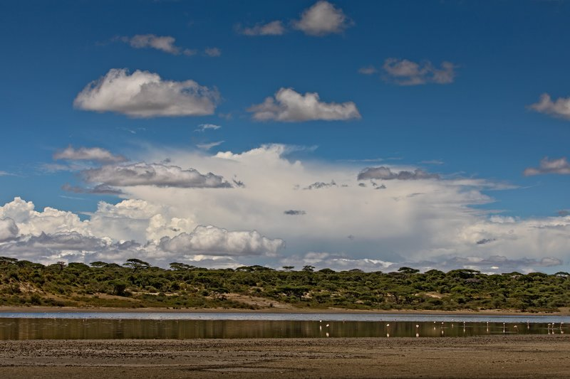 large_Lake_Ndutu_21.jpg