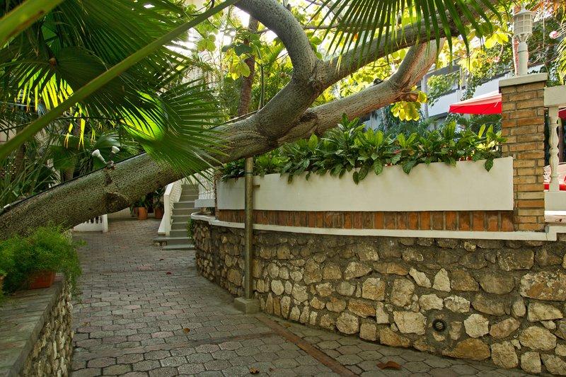 large_Le_Plaza_H..au_Prince_1.jpg
