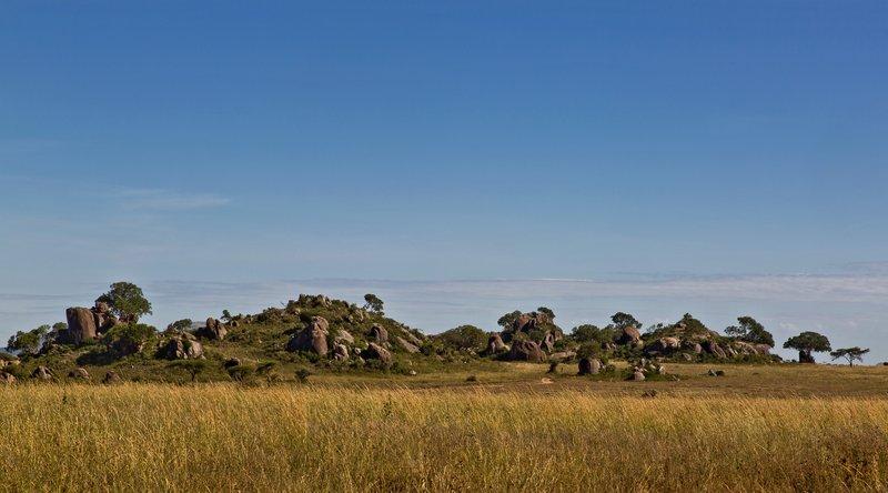large_Maasai_Kopjes_43.jpg