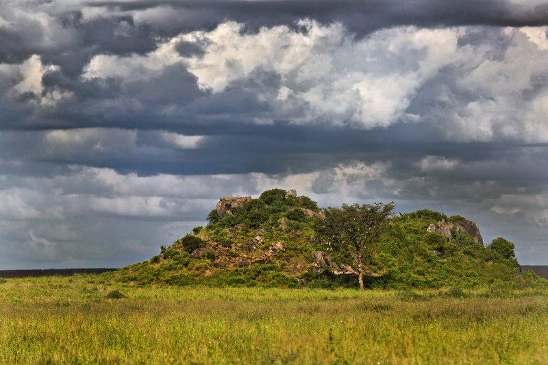 large_Maasai_Kopjes_9___2_.jpg