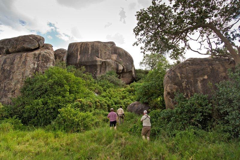 large_Maasai_Paintings_11-31.jpg