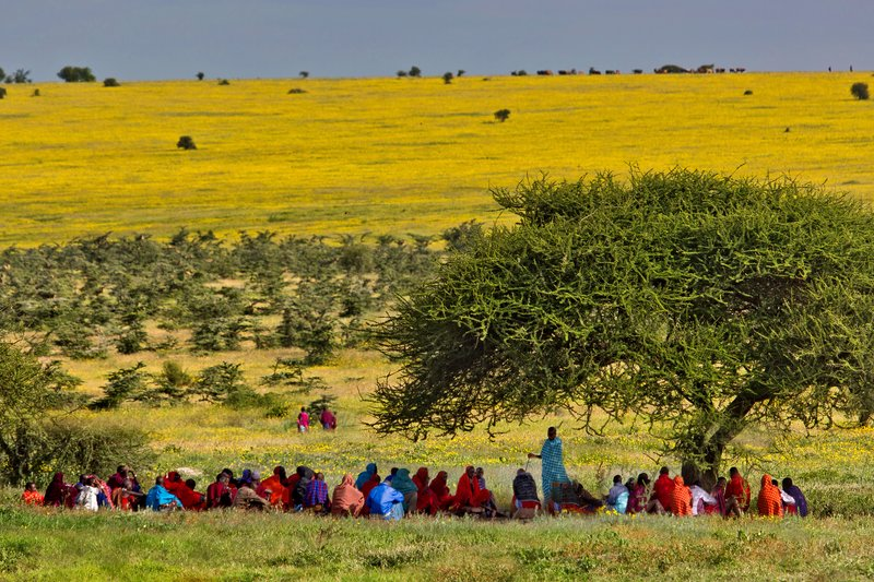 large_Maasai_Vil..eeting_12-3.jpg