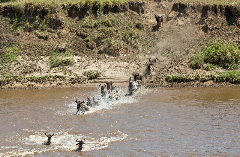 large_Mara_River..sing___1__3.jpg