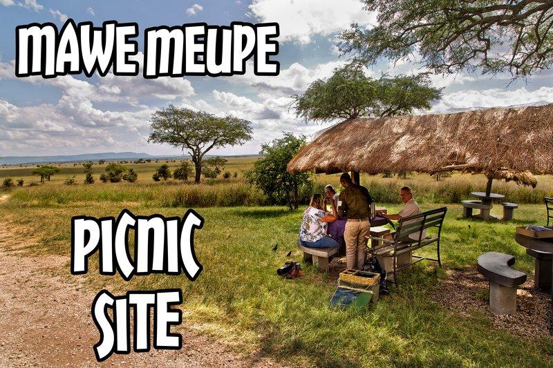 large_Mawe_Mupe_Picnic_Site_1.jpg