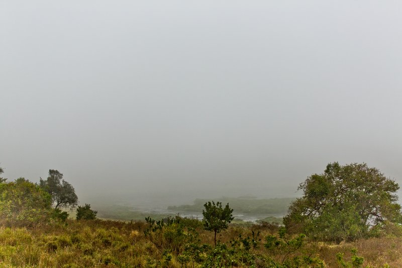 large_Mist_over_Marsabit_5.jpg