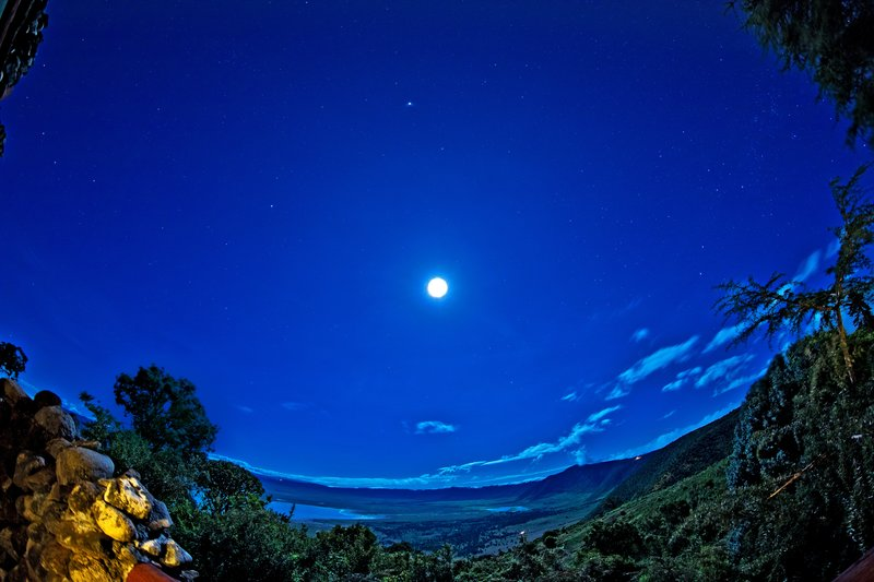 large_Ngorongoro..Moonlight_1.jpg
