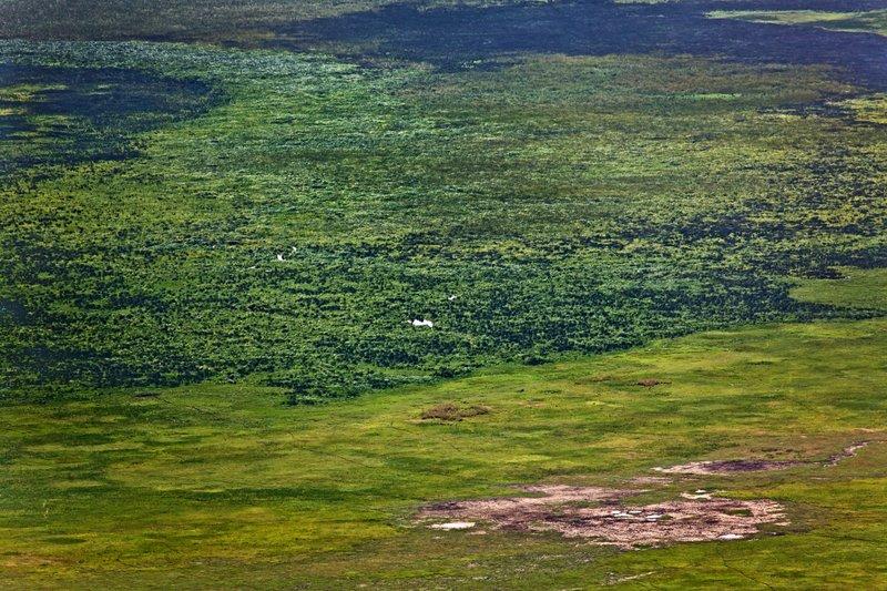 large_Ngorongoro..ater_Rim_12.jpg