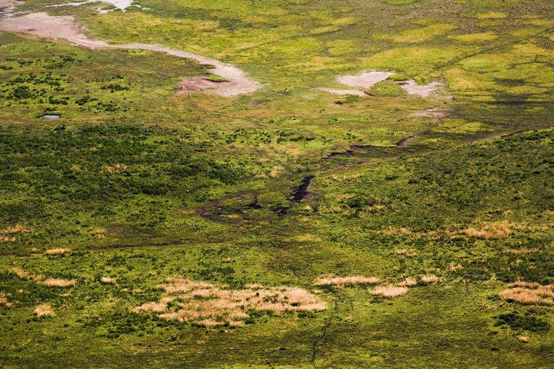 large_Ngorongoro..ater_Rim_14.jpg