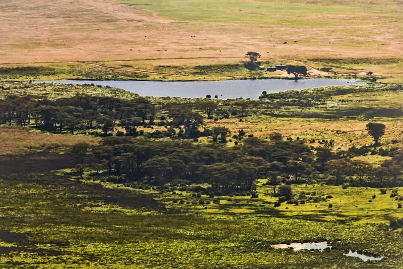 large_Ngorongoro..ater_Rim_20.jpg