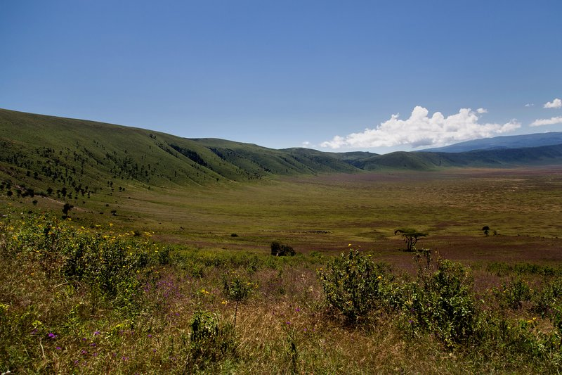 large_Ngorongoro..cent_Road_3.jpg