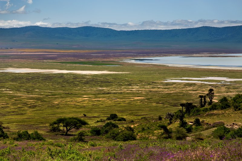 large_Ngorongoro..cent_Road_5.jpg