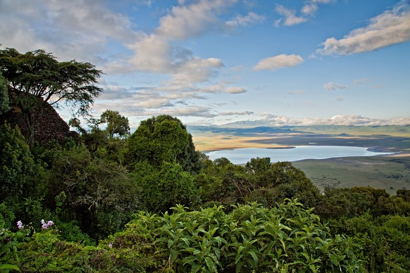 large_Ngorongoro..m_the_Bar_1.jpg