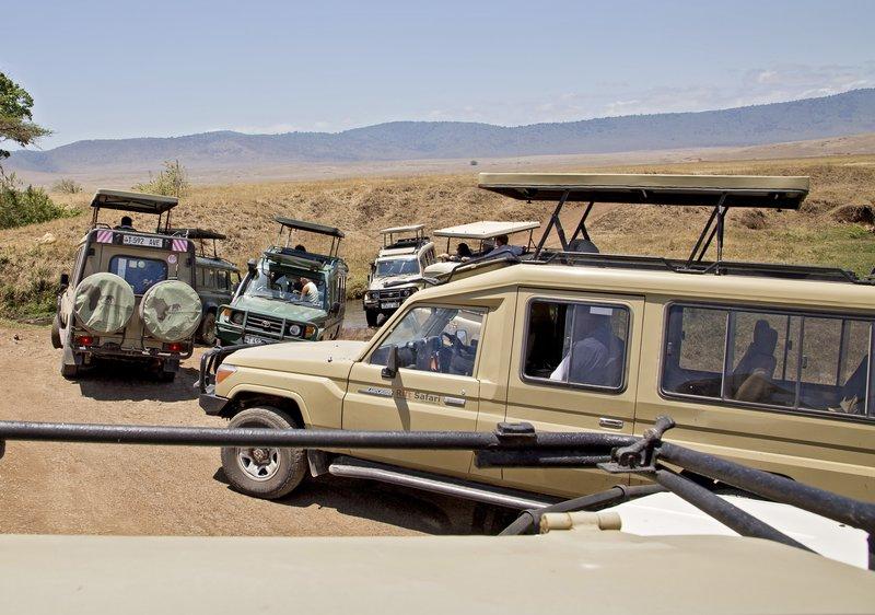 large_Ngorongoro_2014.jpg