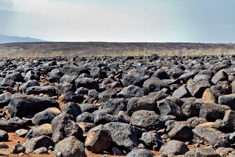 large_North_Horr.._Turkana_36.jpg