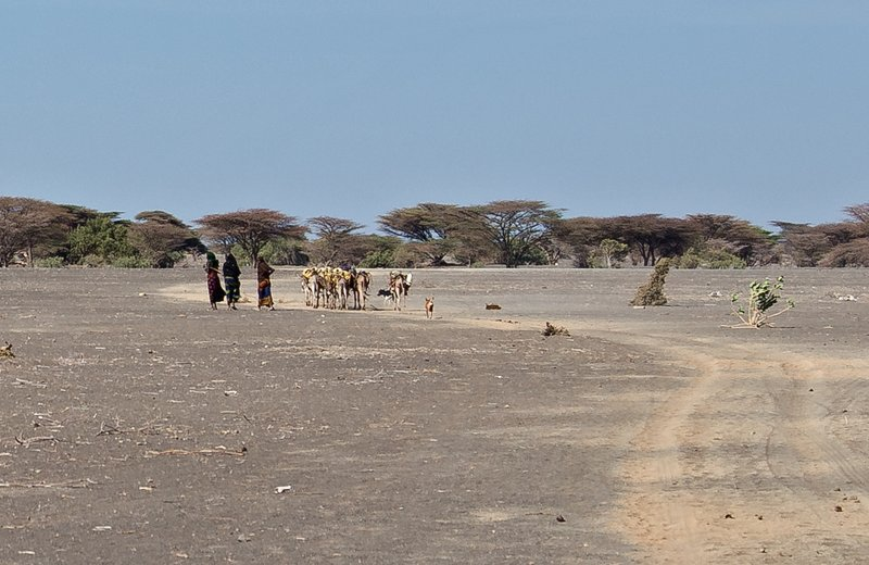 large_North_Horr..e_Turkana_5.jpg