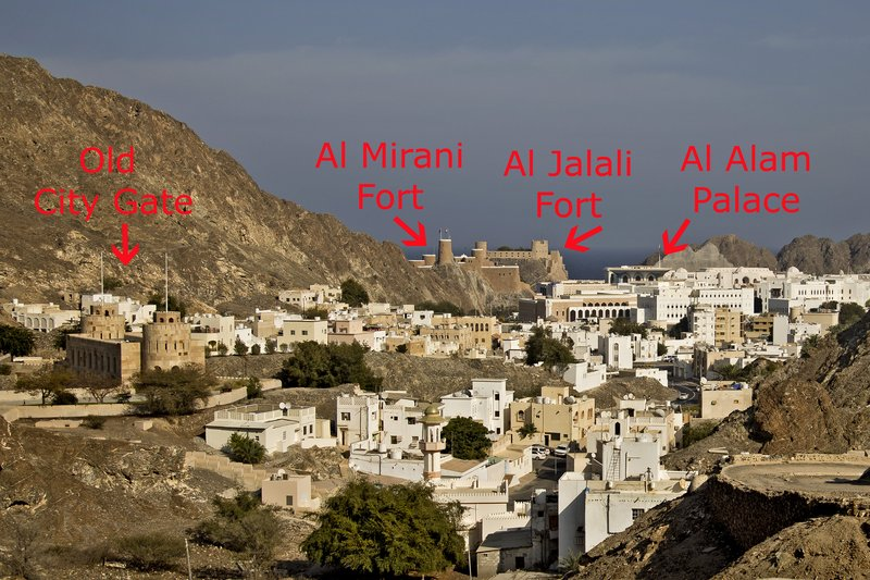 large_Old_Muscat_1A.jpg