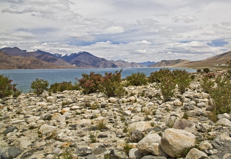 large_Pangong_Lake_19.jpg
