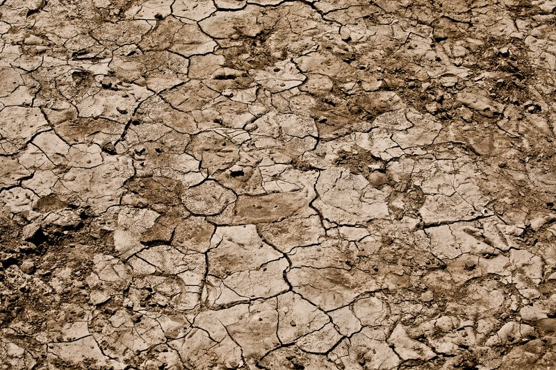 large_Parched_Earth_31.jpg