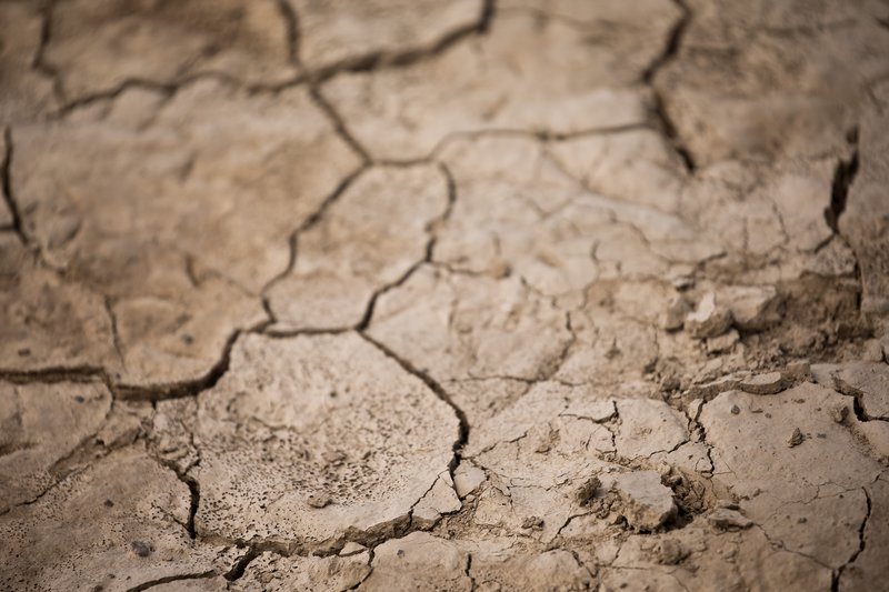 large_Parched_Earth_33.jpg