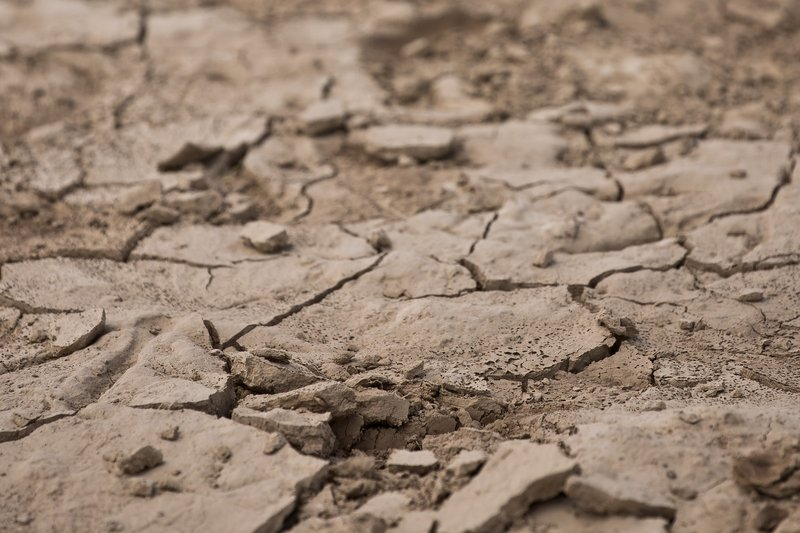 large_Parched_Earth_34.jpg