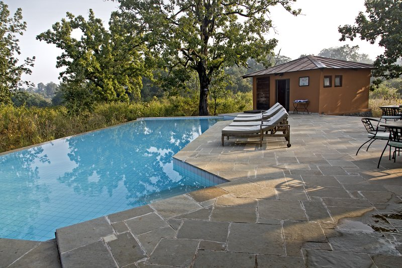 large_Pench_Tree..the_Pool_12.jpg
