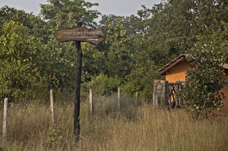 large_Pench_Tree_House_Sign_1.jpg
