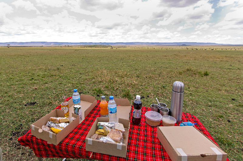 large_Picnic_with_a_View_3.jpg