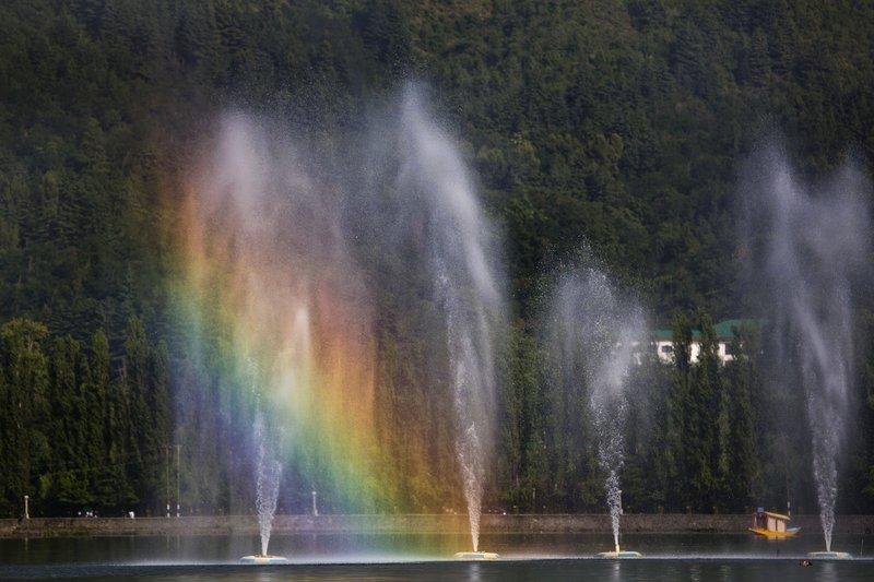 large_Rainbow_1.jpg