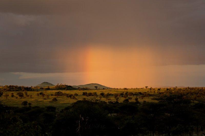 large_Rainbow_4.jpg