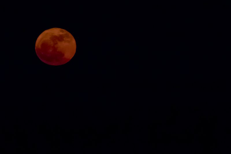 large_Red_Moon.jpg