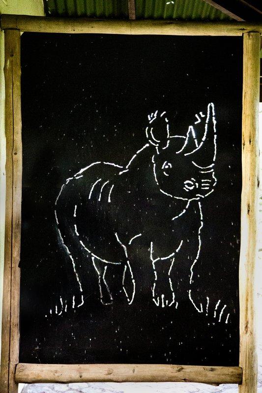 large_Rhino_Info..Centre_11-2.jpg