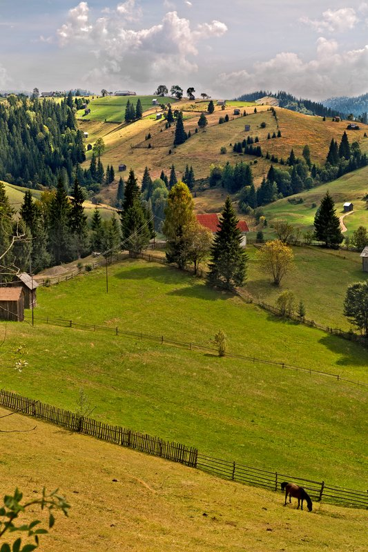 large_Romanian_Countryside_1.jpg