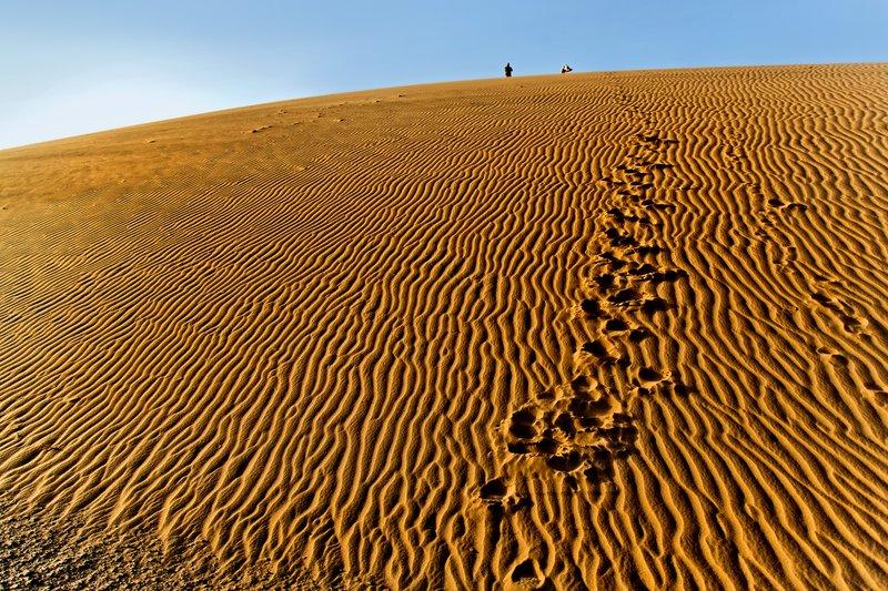 large_Ruso_Sand_Dune_12.jpg