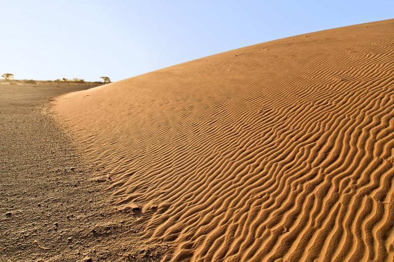 large_Ruso_Sand_Dune_2.jpg