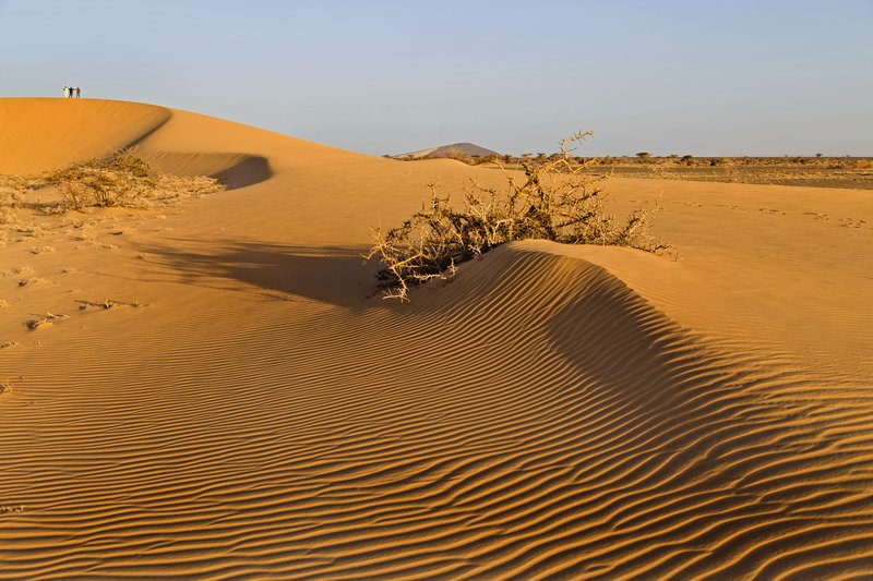 large_Ruso_Sand_Dune_25.jpg
