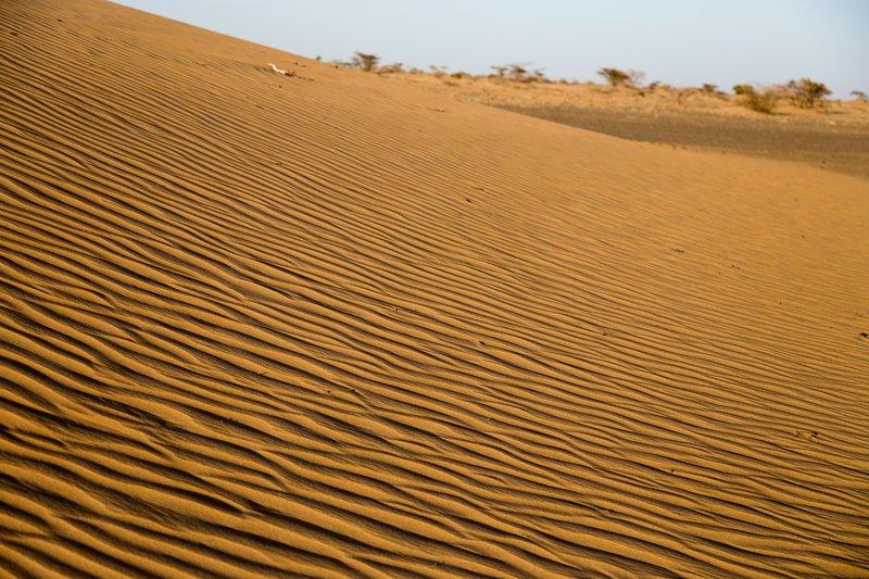large_Ruso_Sand_Dune_3.jpg