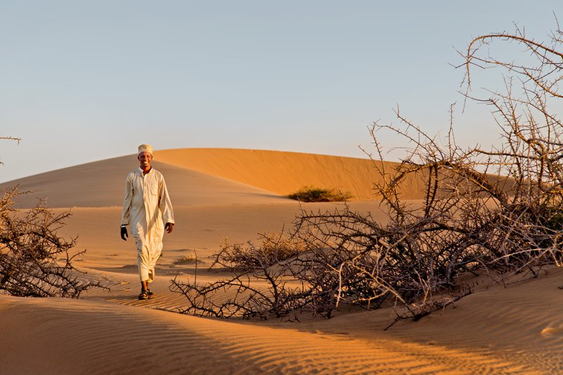 large_Ruso_Sand_Dune_49.jpg