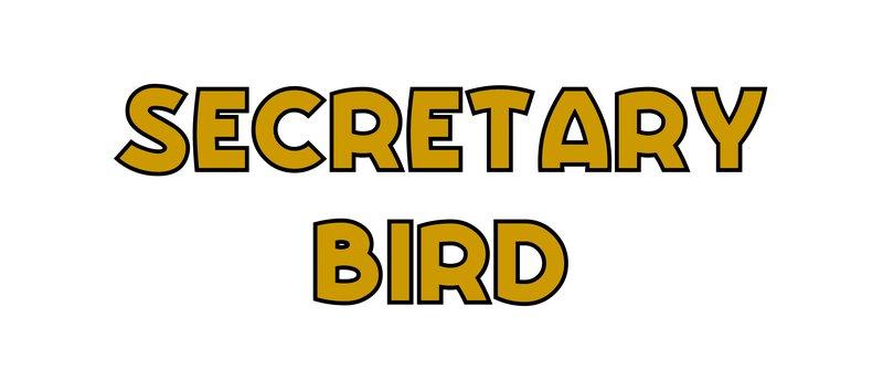 large_Secretary_Bird.jpg