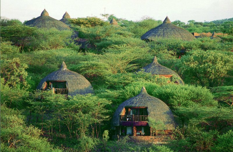 large_Serengeti_..afari_Lodge.jpg