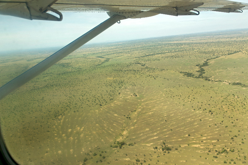 large_Serengeti_from_the_Air_3.jpg