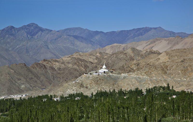 large_Shanti_Stupa_51.jpg