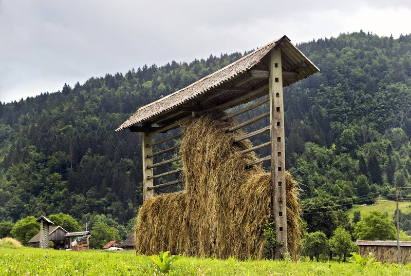 large_Slovenian_Hay_Stack_1.jpg