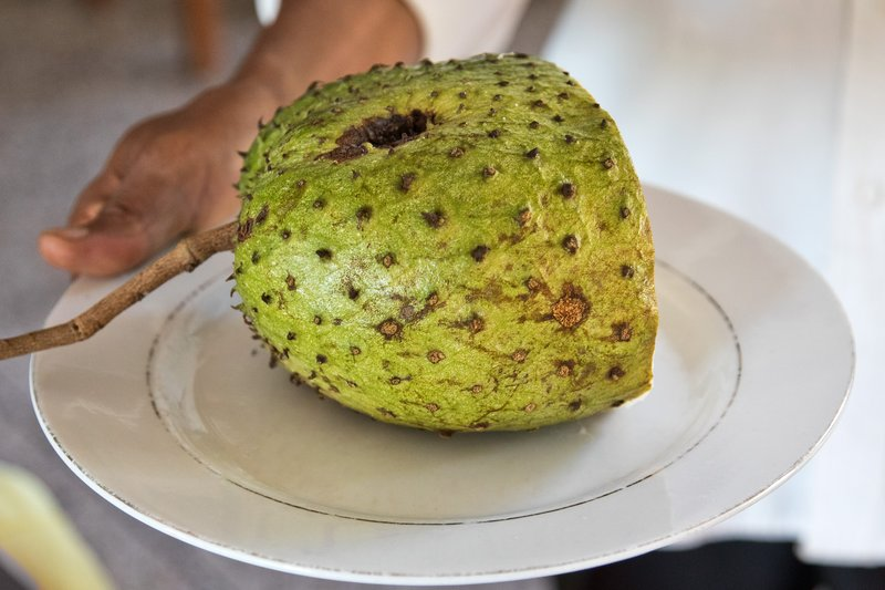large_Soursop_2.jpg