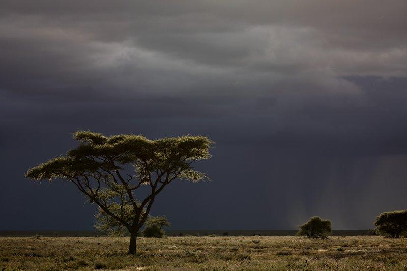 large_Stormy_Clo..er_Ndutu_51.jpg