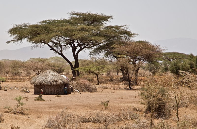 large_Straw_Huts_near_Isiolo_1.jpg