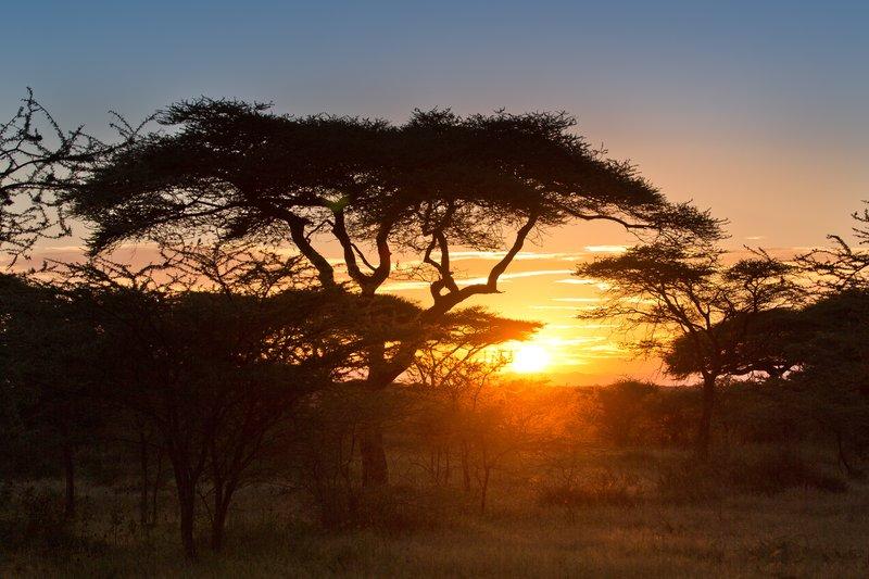 large_Sunrise_over_Ndutu_9-3.jpg