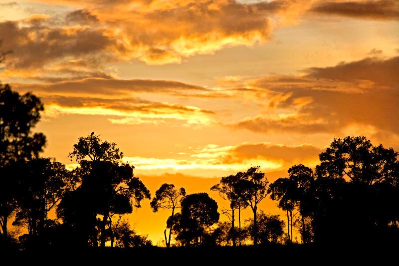 large_Sunrise_over_Serengeti_61.jpg